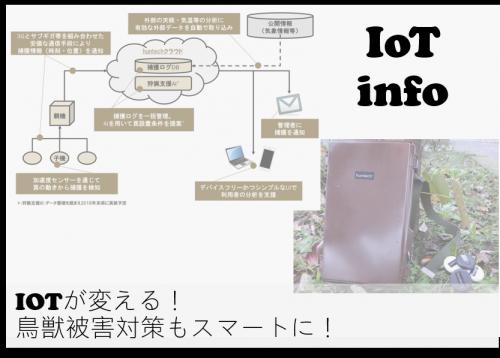 【IoTinfo】IoTが変える!鳥獣被害対策もスマートに! #139